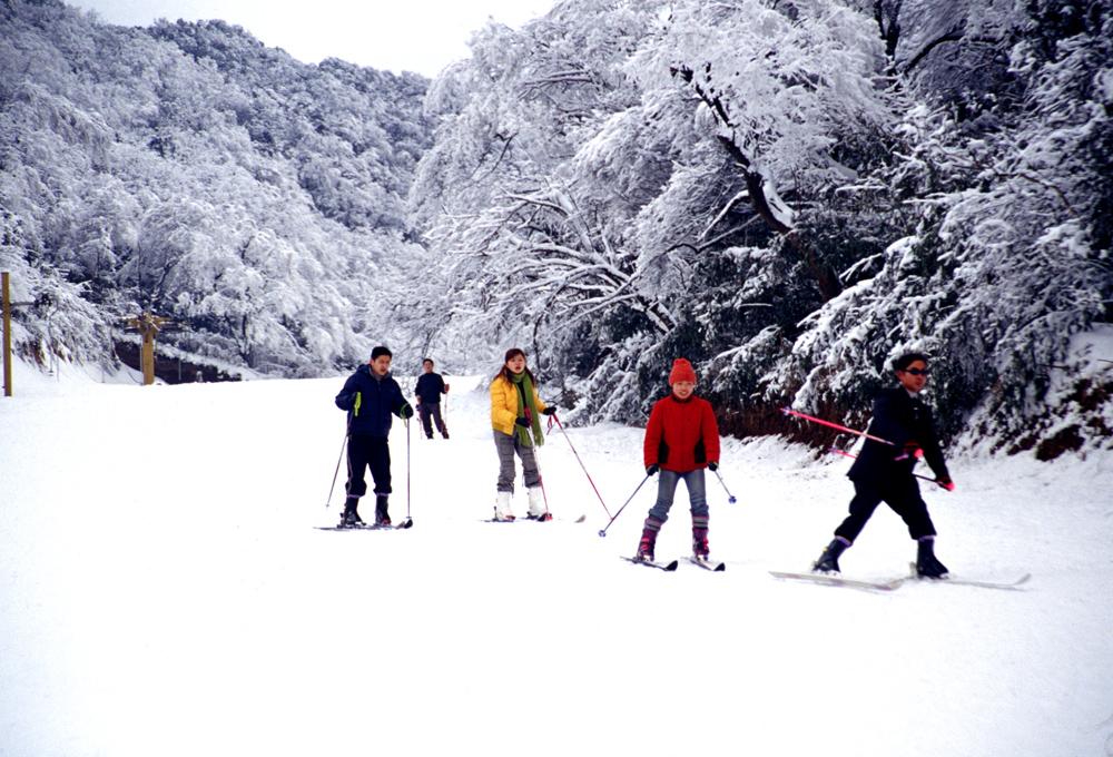 重庆冬天具有丰富的旅游资源,在一些高海拔地区冰雪茫茫,银装